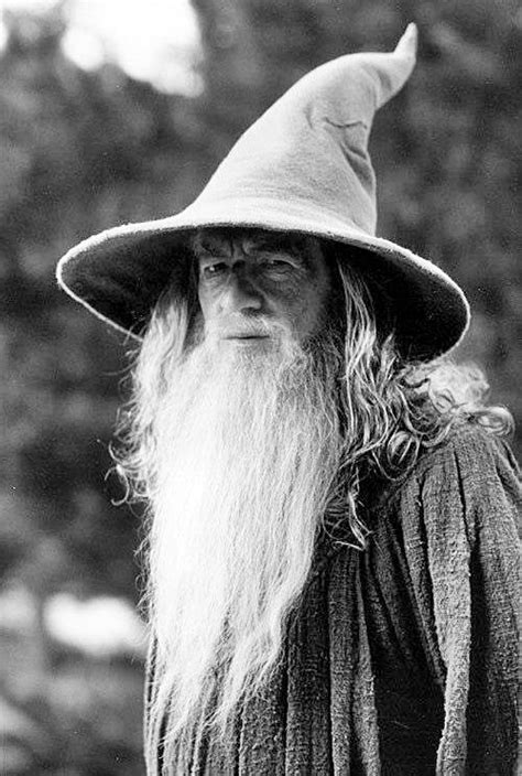 Gandalf the Grey | Lord of the rings, Gandalf, Fellowship
