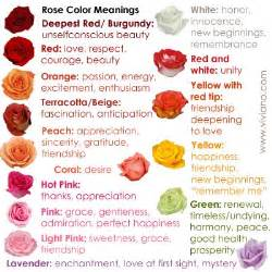 what do the colors of roses the world s catalog of ideas