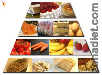 la piramide nutricional  alimentaria  su composicion