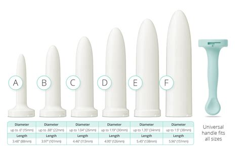 viginal size and types pictures vaginal shapes pics
