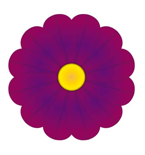 flowers by color free illustration flower purple colors flowers free