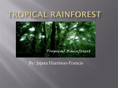 Ppt Tropical Rainforest Powerpoint Presentation Id 2690479 Rainforest Powerpoint