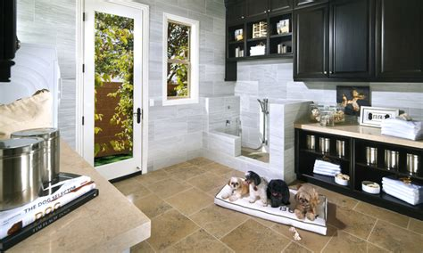home amenities pets amenities rising trend for homebuilders daily mail