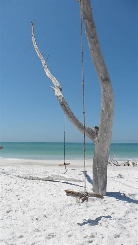 beach swing swing on a florida beach united states pinterest
