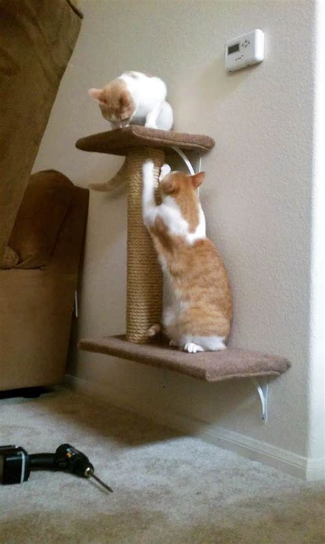 simple diy cat trees  spoil  kitty shelterness