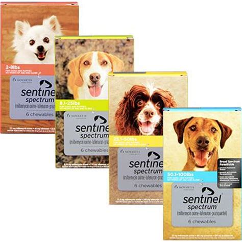 sentinel for dogs sentinel spectrum heartworm flea prevention for dogs 1800petmeds