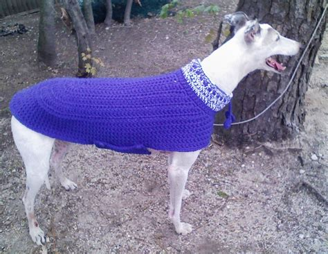 pattern for greyhound dog coat greyhound sweater in a weekend by www greyhoundcrafts com