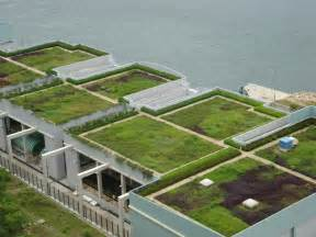 green roof green roofs 40 pics video