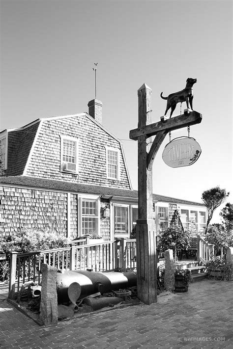black marthas vineyard photo print of vineyard martha s vineyard black and white print framed picture