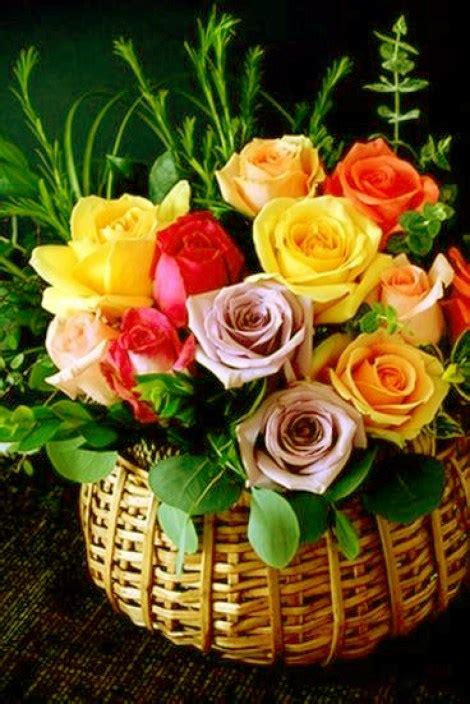 imagenes virtuales hermosas imagenes de flores para felicitar por whatsapp