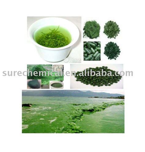 organic spirulina products india organic spirulina supplier