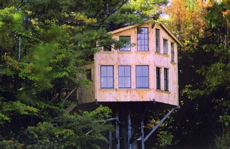 really cool tree houses tree house dovetails