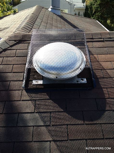 attic fan vent cover nj trappers 187 attic fan and roof vent corners