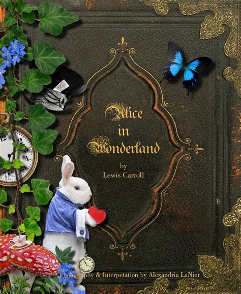 libro wonderland once upon a fairy court by alexandria lanier fine art photography blurb books