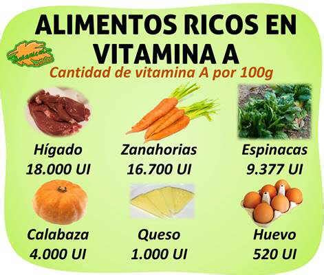 alimentos con vit a alimentos ricos en vitamina a