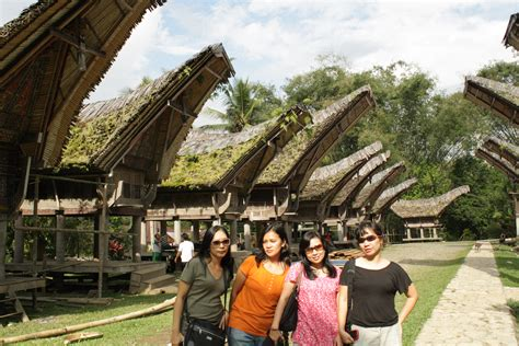 Bibit Rosemary Surabaya rumah adat tradisional toraja the sundanese tragedy