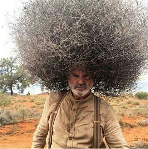 14 best images about book bad hair does not exist pelo best 25 bad hair day meme ideas on pinterest hair fails