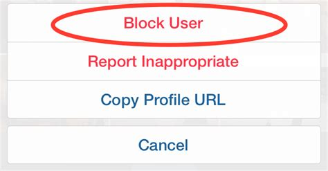 Search Instagram User By Email How To Block Instagram Users Iphone Tips Tricks Apps