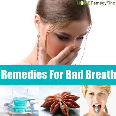 bad breath home remedy effective home remedies to help prevent bad breath diy find home remedies