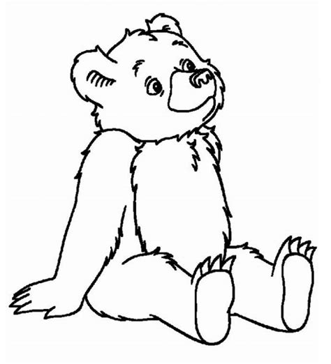 spring bear coloring pages little bear coloring pages google search sprouts tails