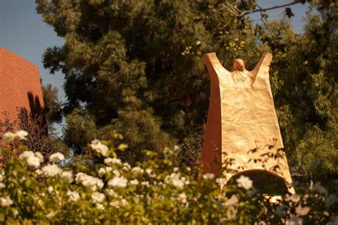 Cal Lutheran Mba Reviews by Cal Lutheran California Lutheran Profile