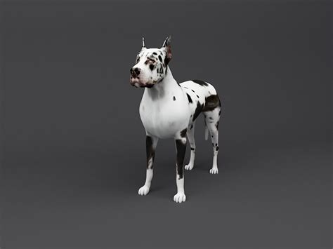great dane  print ready dog model  model  printable stl cgtradercom