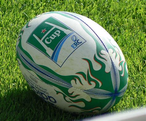 coupe d europe de rugby 224 xv 2010 2011 wikip 233 dia