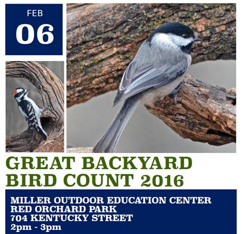 backyard bird count event description