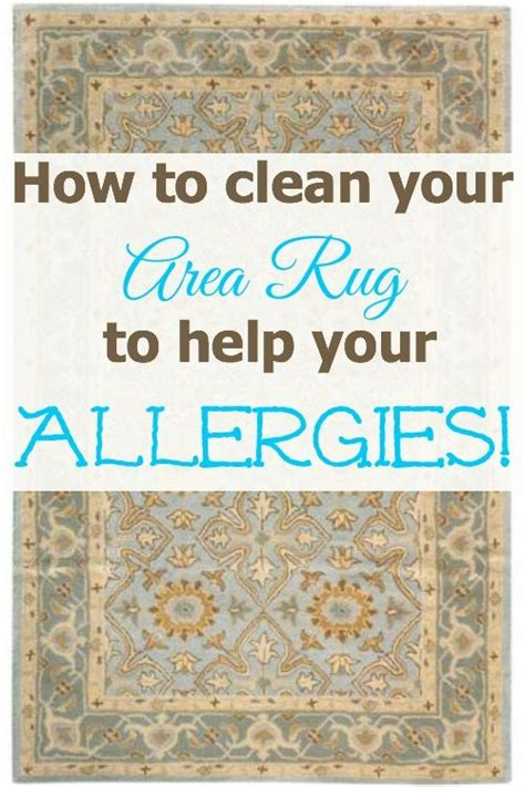 area rug cleaning tips best 25 cleaning area rugs ideas on designer rugs clean living rooms and carpets