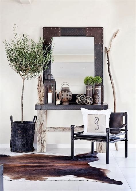 home decor blogs south africa guide to growing olive trees indoors homesthetics