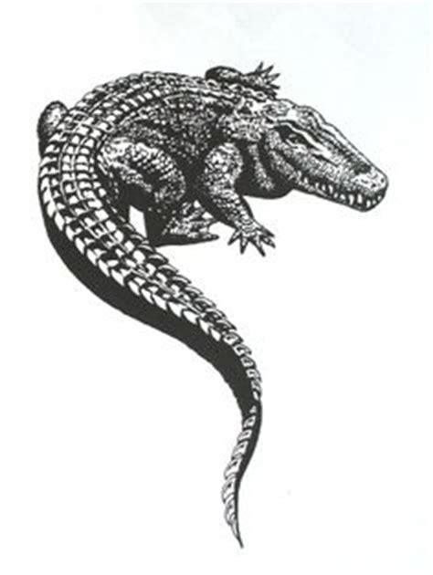 tribal crocodile tattoo 1000 ideas about alligator on tattoos
