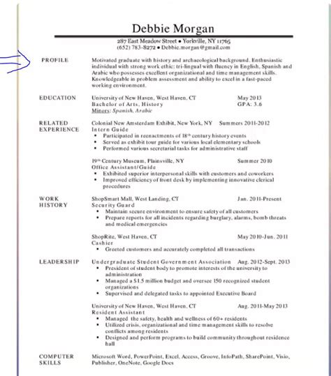 Resume Summary by Resume Summary Exles