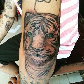 tattoo canggu bali lions and tigers and bears tattlas bali tattoo guide