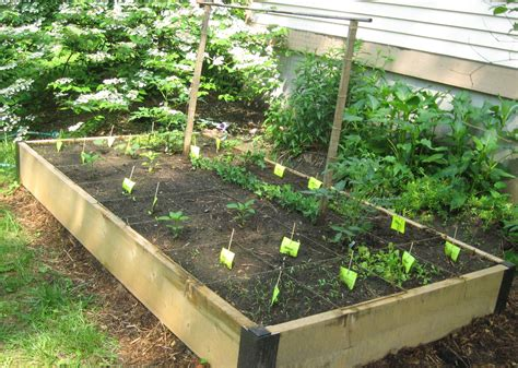 Raised Bed Vegetable Garden Layout Easy And Simple Diy Square Foot Wood Raised Bed Vegetable Gardens With Simple Wire Trellis Ideas