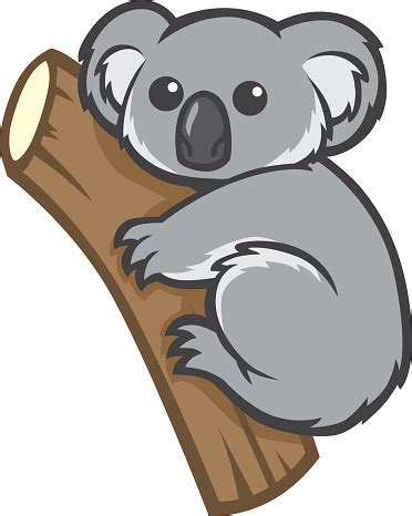 koala clip koala clipart vector pencil and in color koala clipart