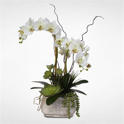 real touch phalaenopsis silk orchid arrangement with