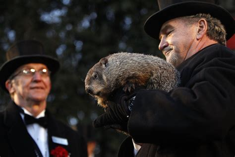 groundhog day usa today groundhog day is the dumbest american for the win