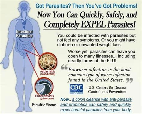 Why Liver Cleanse After Parasite Detox by Parasite Cleanser Pills Detox Colon Liver Cleanse Healthy