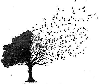 tree dna image 1390480 by awesomeguy on favim com bird and tree tattoo i really really want this my