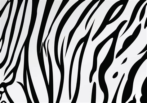 tiger stripe template printable white tiger pattern www imgkid the image kid has it