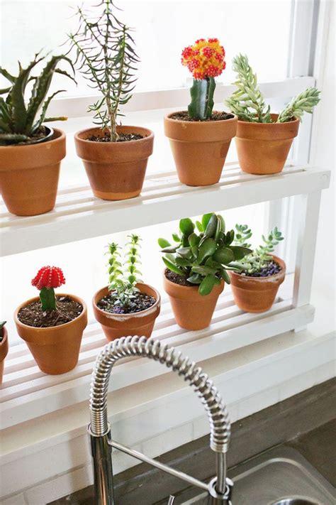Diy Garden Shelf by Diy Window Ledge Plant Shelf