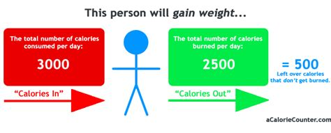 Do You Counting Your Calorie Intake Try This by Calorie Counting A Guide To Calories Weight