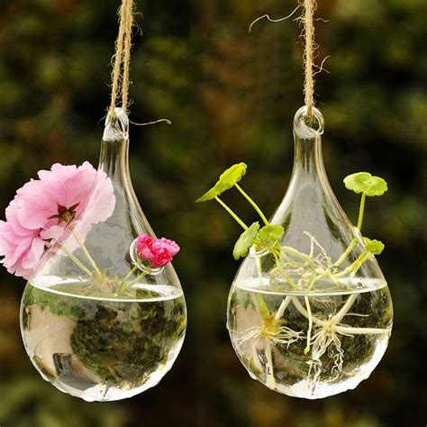 Glass Hanging Planters by Teardrop Glass Hanging Planter Container Vase Pot Home