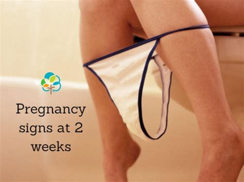 color changes during pregnancy pregnancy symptoms at two weeks are you expecting