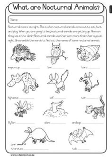 printable nocturnal animal book 1000 images about nocturnal animal unit on pinterest