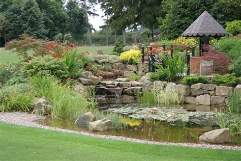 backyard ponds designs garden pond design