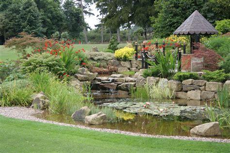 backyard designers garden pond design