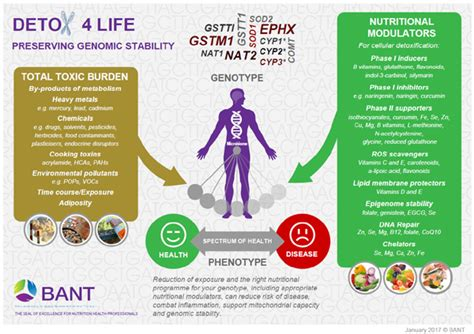 Correct Detox Procedures by Bant Releases Detox For Poster Detox For Not