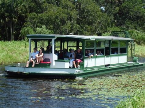 sarasota boat rides airboat front view picture of myakka river state park