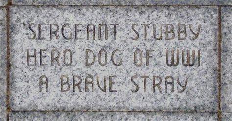 Sergeant Stubby Memorial Hounds Sergeant Stubby A Canine War